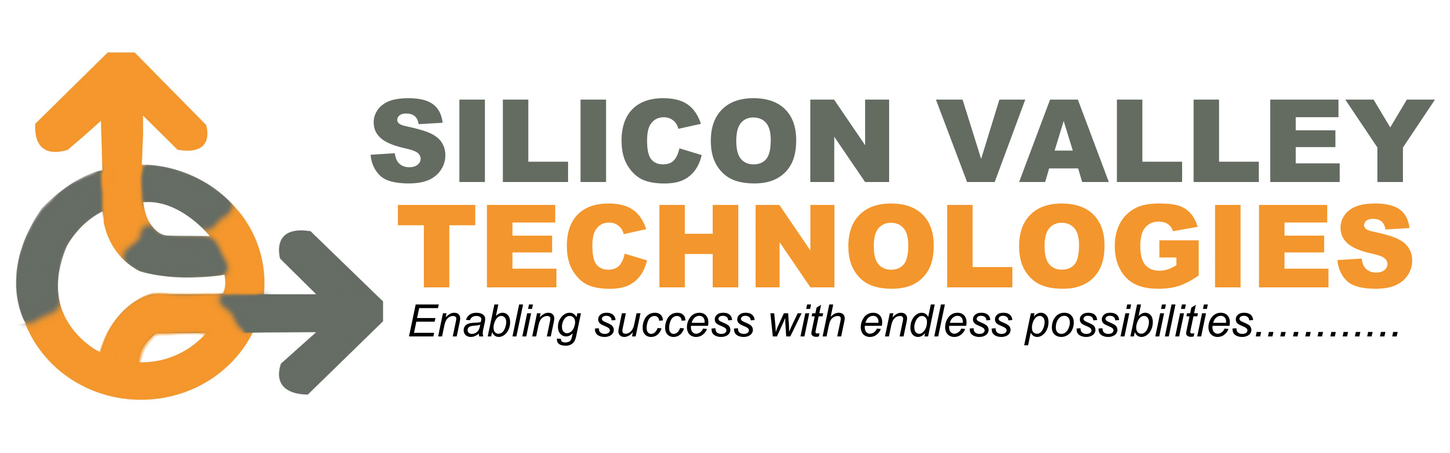 Silicon Valley Technologies Limited